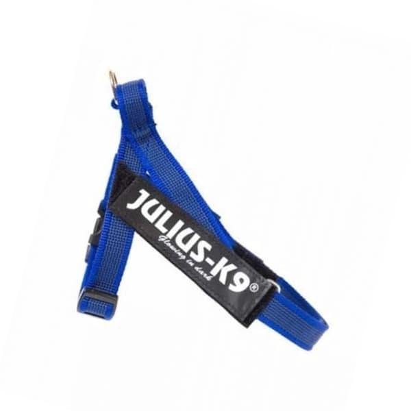 julius-k9-idc-belt-harness-azul-mini