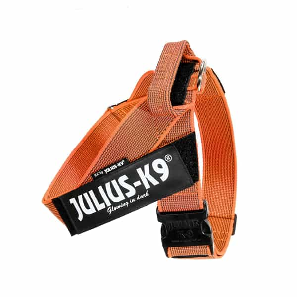julius-k9-idc-belt-harness-naranja