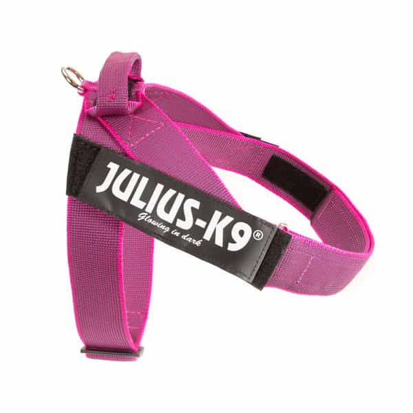 julius-k9-idc-belt-harness-rosa